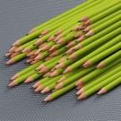 Boys'Day-Bleistift, 50 Stück, grün mit URL